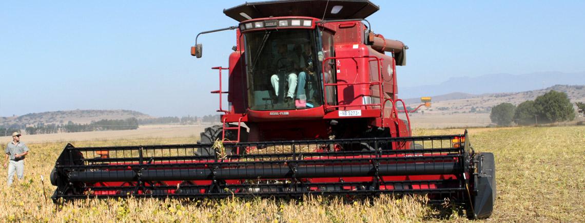Mechanical-Harvesting