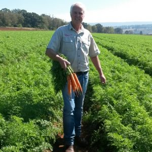 Nativa Summer Carrot Production Now Possible